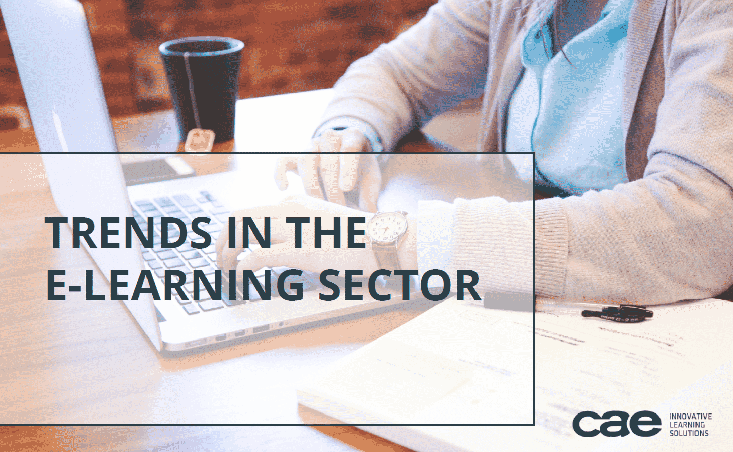 E-book on trends in the e-learning sector